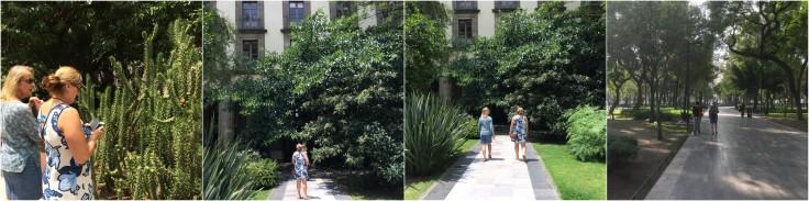 Gardens.jpg
